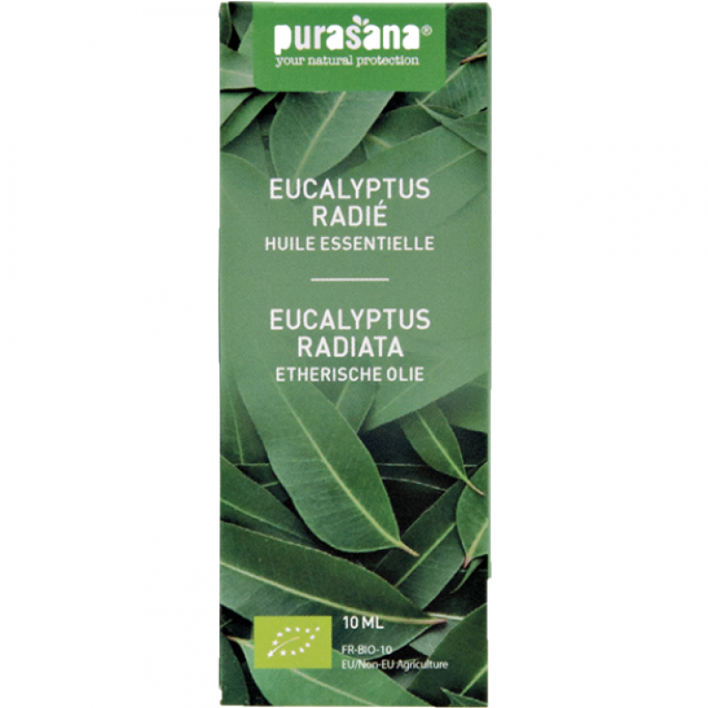 Eucalyptus Radiata 10 ml